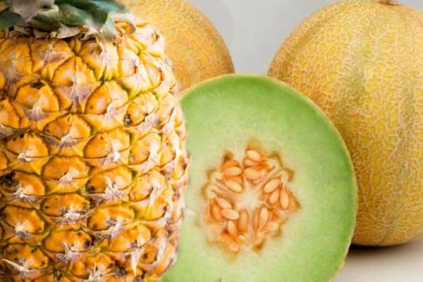 batido de piña y melon